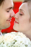 Bride with the fiance, they concern by the noses — Stock Photo