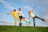 Cielo de formación familiar hierba — Foto de Stock