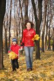 Matka idzie na spacer z synem w parku jesienią z urlopu żółty — Zdjęcie stockowe