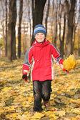 Jongen gaat voor een wandeling in het park in het najaar met gele bladeren — Stockfoto