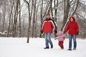 父亲和母亲走在公园与儿童在冬季 — 图库照片