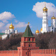 Kremlin churches — Stock Photo #7442549