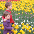 Children on field of tulips — Stock Photo