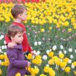 Children on field of tulips — Stock Photo