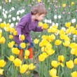 Little girl on field of tulips — Stock Photo #7443846