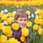 Little girl sit on field of tulips — Stock Photo