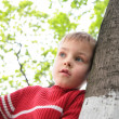 Stock Photo: Boy and tree