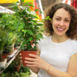 Royalty-Free Stock Photo: Young woman holds pot with plant in shop