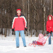Parents and child on sled in forest - Foto Stock