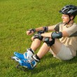 Stock Photo: Roller sits on grass