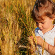 Little girl sits on wheaten field — Stock Photo