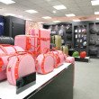 Stock Photo: Division of bags and trunks in store