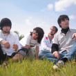 Group of friends sit on grass — Stock Photo