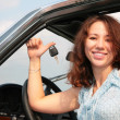 Stock Photo: Woman & car