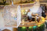 Avian cell — Stock Photo