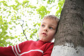 Boy and tree — Stock Photo