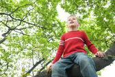 Boy sits on tree — Stock Photo