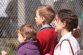 母亲和儿童看看格子 — 图库照片