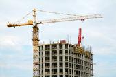 Crane builds house — Stock Photo
