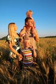 Family on wheaten field — Stock Photo