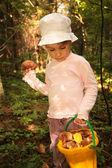маленькая девочка с ведро грибов в лесу — Стоковое фото