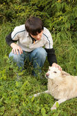 Fellow caresses by hand dog in grass — Stock Photo