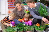 Family in flower shop — Stock Photo