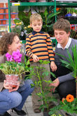Parents with child in flower shop — Стоковое фото
