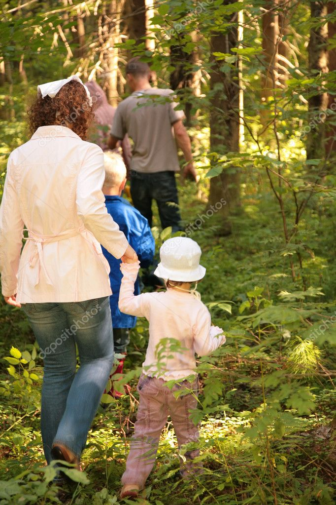 Behind Family in forest to mushrooms  Stock Photo #7445953