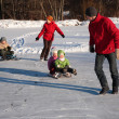Parents pull children on sleds — Stock Photo #7450107