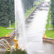 Channel with fountain in Peterhof - Stock Photo