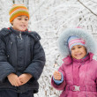 Stock Photo: Cheerful boy and little girl with Bengal fire in hand in winter