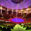 Circle arena in circus green and purple light lamps general view — Stock Photo