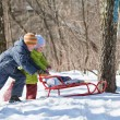 Boy and little girl push sledge in winter in wood - Stock Photo