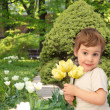 Boy with yellow tulips in park, collage — Stock Photo