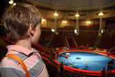Little boy in circus with blue arena waiting for performance and — Stock Photo