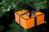 Celebratory gift in yellow boxes hanging on Christmas artificial — Stock Photo