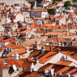 Dubrovnik old town red roofs — Stock Photo #7685116