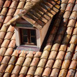 Close up of red roof and tiles — Stock Photo