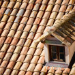 Close up of red roof and tiles