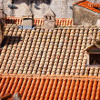 Close up of red roof and tiles — Stock Photo #7809529