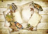 古いカードと蝶のヴィンテージ紙の背景 — ストック写真