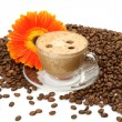 Coffee and flower — Stockfoto #6770650