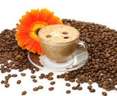 Coffee and flower — Stock Photo