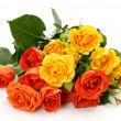 Fine roses -  