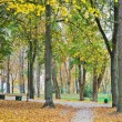 Stock Photo: Old wooden bench in the autumn park