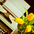 Retro postcard with typewriter and tulips - Stock Photo