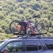 Three bicycles on the top of car near forest - Stockfoto