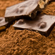 Stock Photo: Cacao and