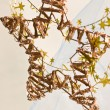 Christmas decoration — Stock Photo #7820448